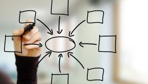 Networking, Branding & Marketing Strategies