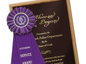 Rosette Ribbons and Award Plaques from Coller Industries will help your company find business success.